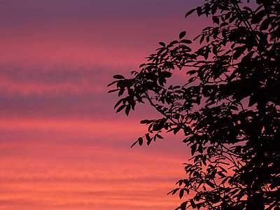 Zachód słońca widziany zokna #1