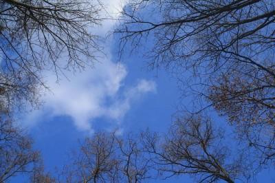 Niebo bez filtra polaryzacyjnego