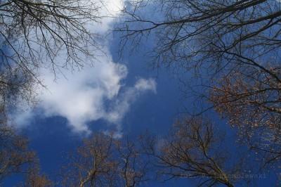 Niebo zfiltrem polaryzacyjnym