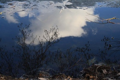Zdjęcie nieba wwodzie bezfiltra polaryzacyjnego