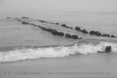 Fale morskie ifalochron #2