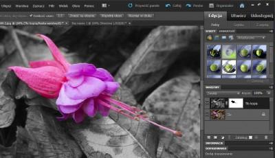 Kolorowy element nazdjęciu czarno-białym Photoshop Elements