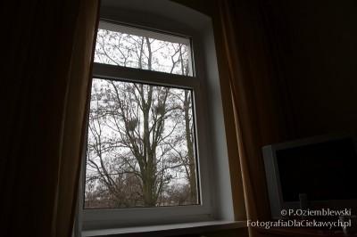 Camera obscura zpokoju - okno przeznaczone dozaklejenia