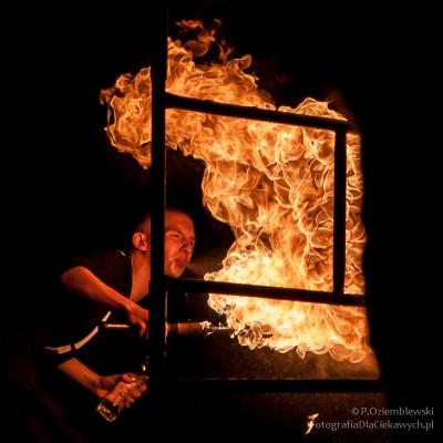 Fireshow - ogień