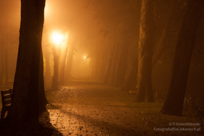 Chodzież nocą - promenada nad jeziorem