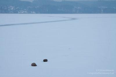 Zdjęcia zimy - minimalistyczny krajobraz