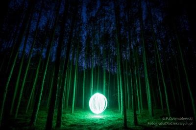 Świetlista kula znaleziona w lesie