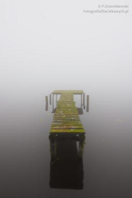 Mgła jako tło