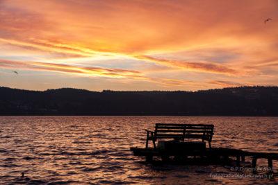 Jezioro Miejskie wChodzieży