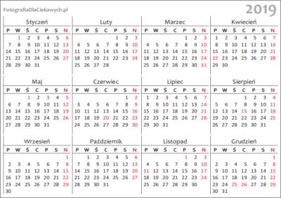 Kalendarz 2019 dodruku - układ roczny