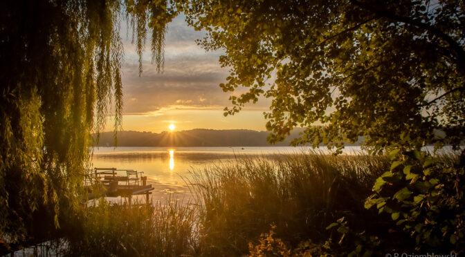 Poranek nad jeziorem Chodzieskim