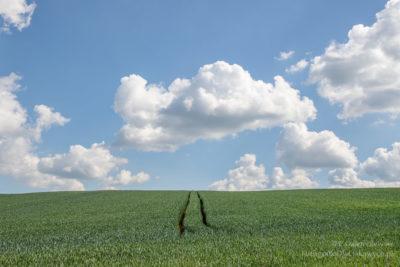 HDR zchmurami - prześwietlone chmury zniknęły