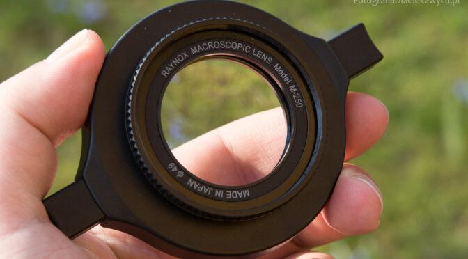 7 metod na powiększenie [makrofotografia i zdjęcia z bliska]